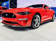 肌肉感 新款Mustang GT