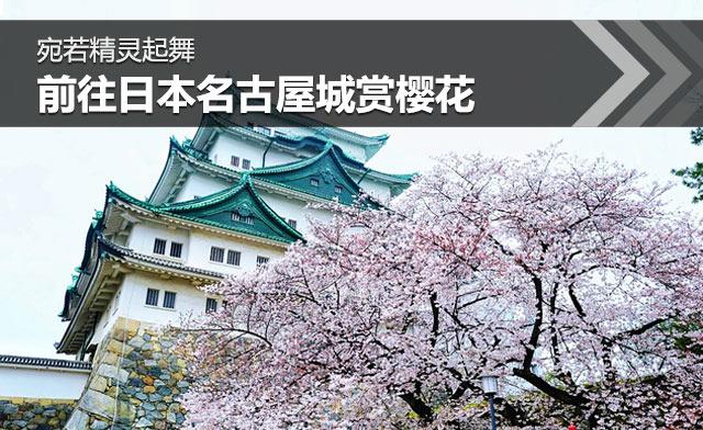 宛若精灵起舞 前往日本名古屋城赏樱花