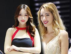 广州车展美女模特分系列总结