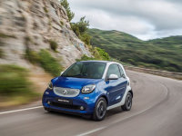 smart fortwo��0.9T���� ��15.6-17.6��