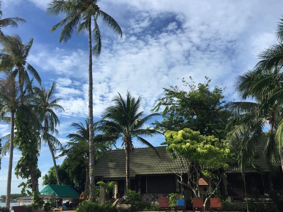 泰国苏梅岛之旅途见闻