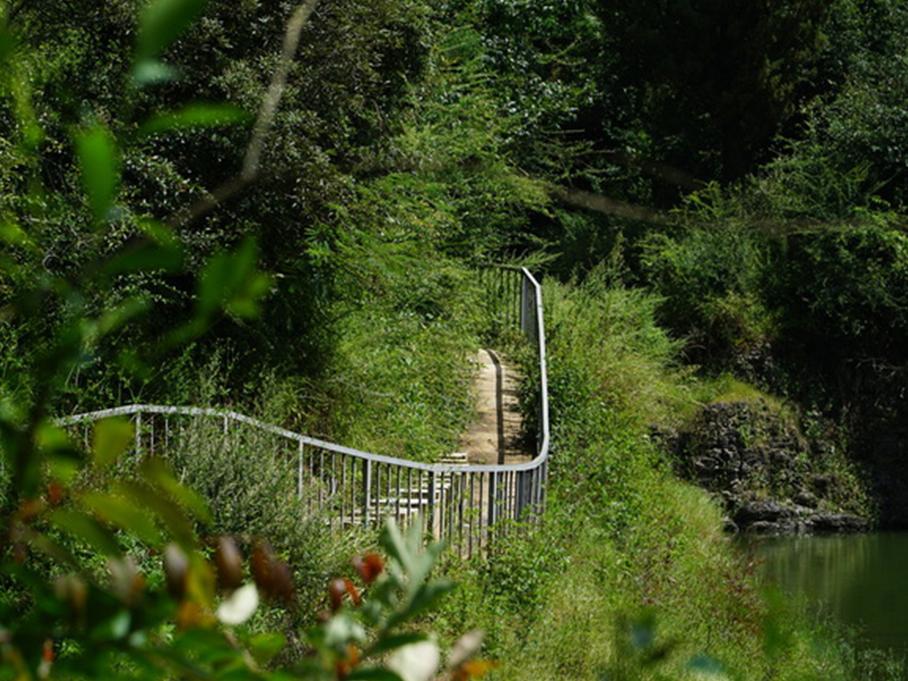 野鸭湖健身步道