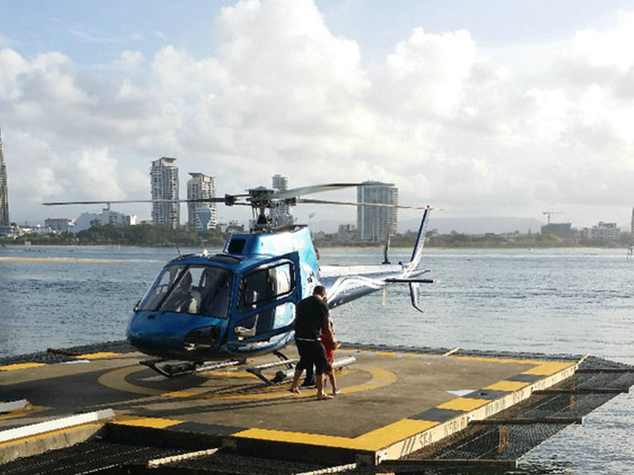 抱考拉,喂袋鼠,坐直升机看风景