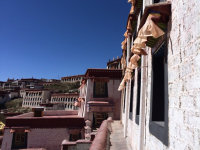 游览甘丹寺