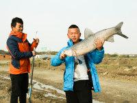 春之乐,渔之趣,另一种苏州