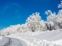 穿越大美雪乡之旅