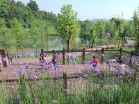 龙灵山湿地