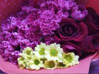#浓情母亲节#陪伴是最好的爱