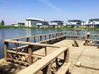 沉湖湿地公园