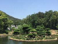贝贝班组织爬木兰天池
