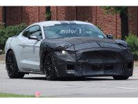 明年初亮相 Mustang Shelby GT500谍照