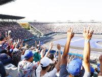 FE墨西哥站  F1赛道的缩小版也有看点