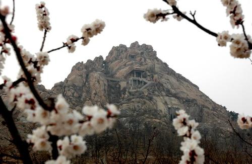感恩之旅——省级风景名胜区大泽山;红色之旅——