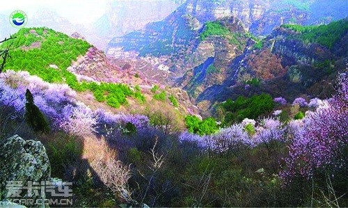 武安国家地质公园,国家森林公园,国家矿山公园,京娘湖国家级水利风景