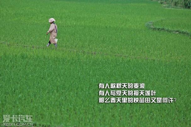 路虎 发现 无止境 未历之征 越野 全地形 雨林