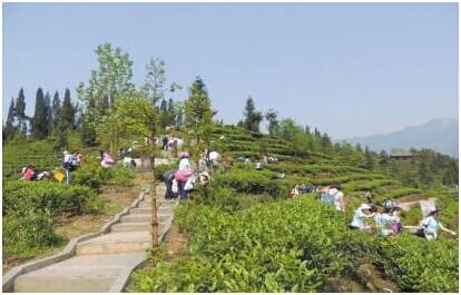 而穿行其中的健康步道,竹林小径将你引入胜景,一怀乡愁萦绕于胸.
