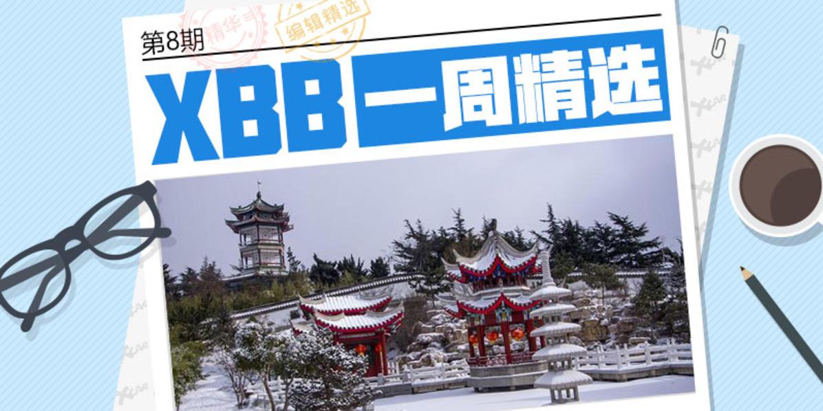 #XBB一周精选# 第8期