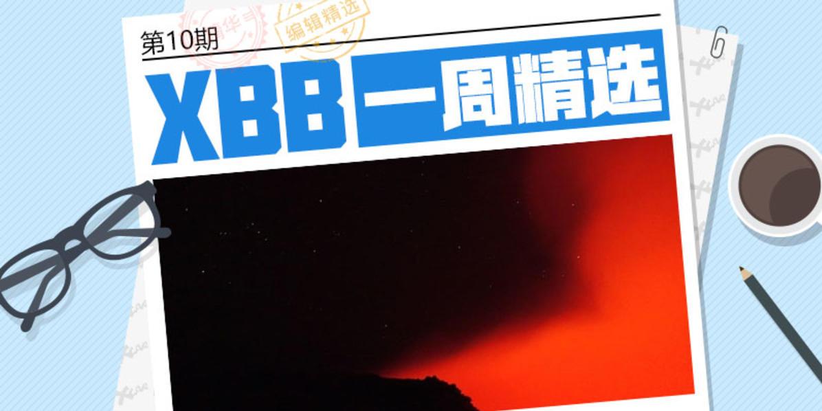 #XBB一周精选# 第10期