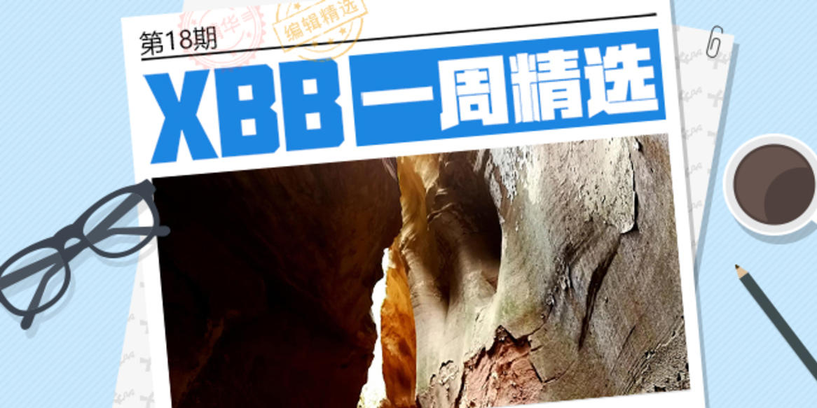 #XBB一周精选# 第18期