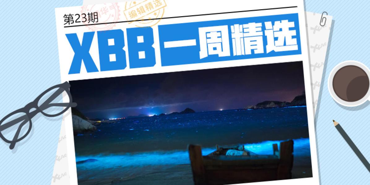 #XBB一周精选# 第23期