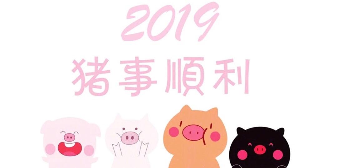 2019 猪事顺利
