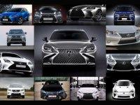 汽车设计72变 都是纺锤格栅有啥不一样?