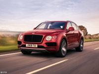 宾利添越V8汽油版官图发布 丰富产品线