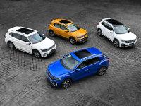 大众集团在近两年半迅速将SUV产品扩展到了十台。