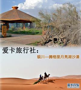 骑骆驼参观岩画 银川-月亮湖沙漠之旅